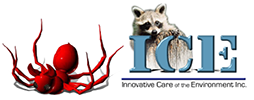 ICE - Innovative Care of the Environment